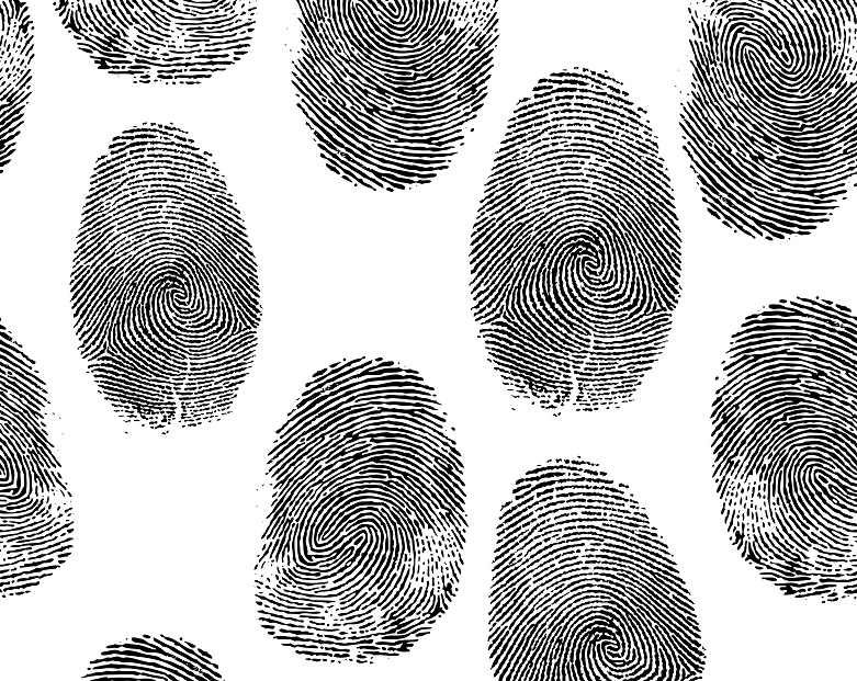 Forensic Evidence Infallible? Not So Fast!
